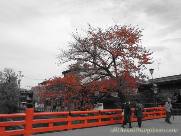 Takayama at fall