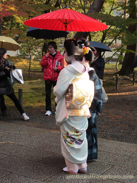 Geiko and maiko in Kyoto